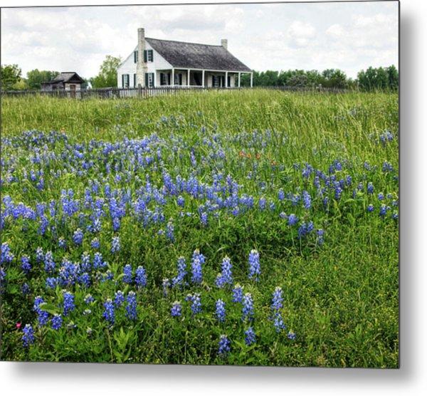 Homestead In East Texas Metal Print