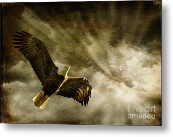 Metal Print featuring the photograph Honor Bound by Lois Bryan