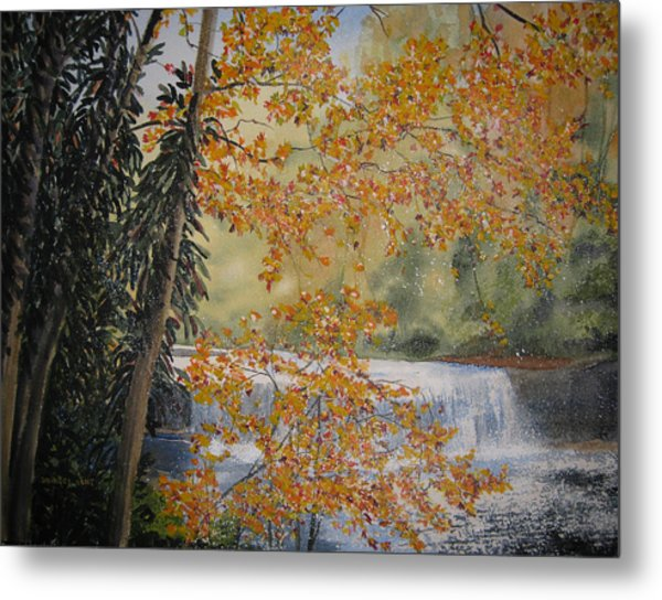 Hooker Falls Metal Print by Shirley Braithwaite Hunt