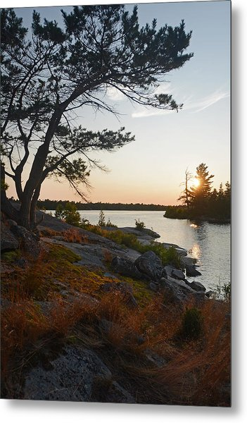 Hopewell Bay Island Wild Grass Sunset-1 Metal Print