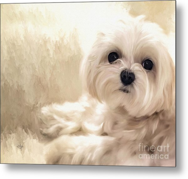Metal Print featuring the digital art Hoping For A Cookie by Lois Bryan