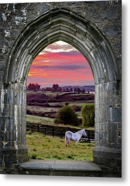 Metal Print featuring the photograph Horse At Sunrise In County Clare by James Truett