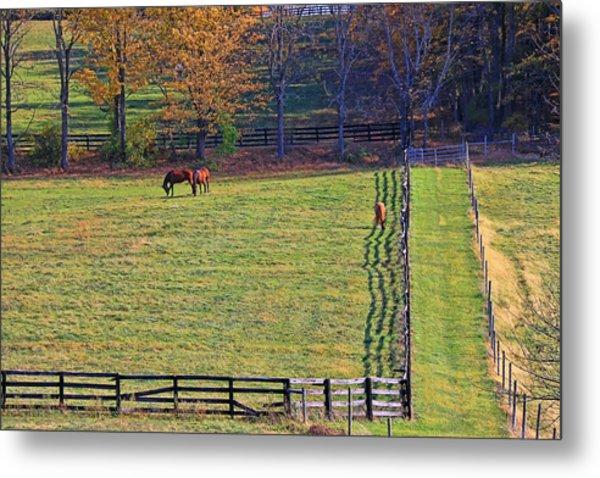 Horse Country # 2 Metal Print