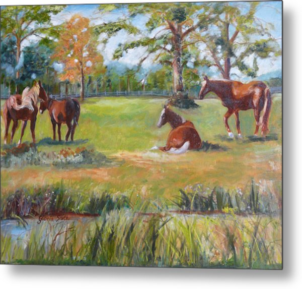 Horse Farm In Georgia Metal Print