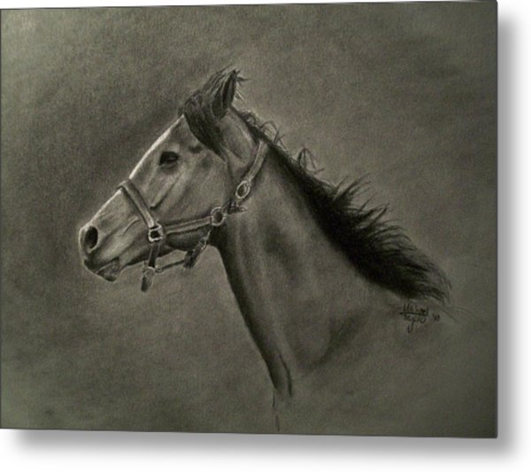 Horse Head Metal Print by Michael Trujillo