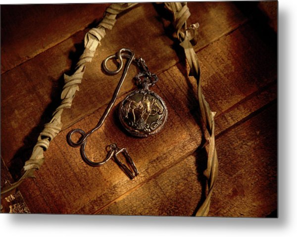 Horse In My Pocket Metal Print by Daniel Alcocer