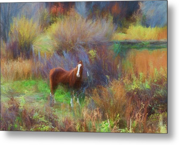 Horse Of Many Colors Metal Print