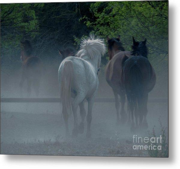 Horse 8 Metal Print