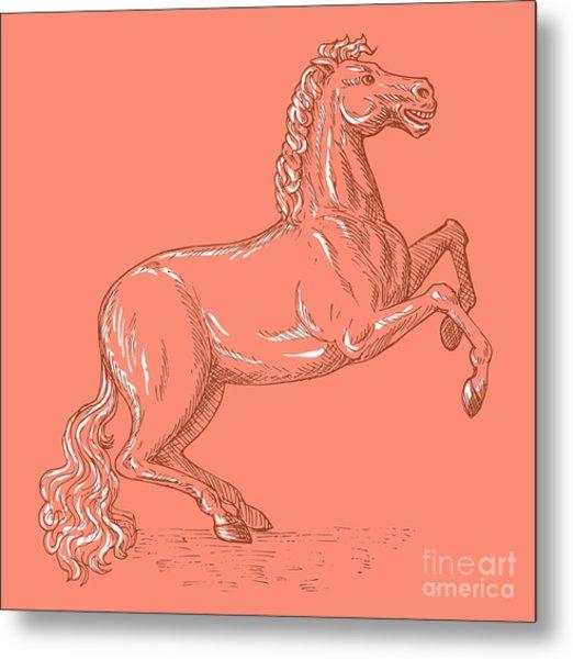 Horse Prancing Metal Print by Aloysius Patrimonio