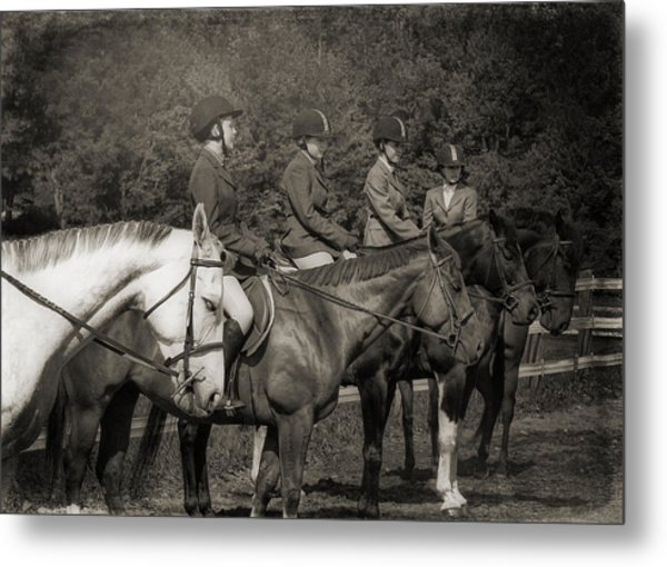 Horse Sense Metal Print by JAMART Photography