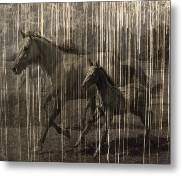 Horses Abstract Mare And Foal Metal Print by Karla Beatty