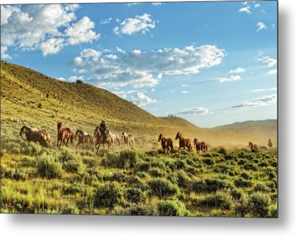 Horses And More Horses Metal Print
