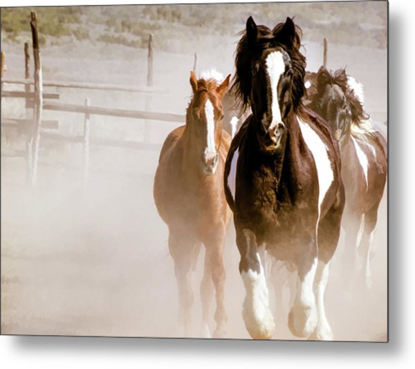 Metal Print featuring the digital art Horses Running Into A Dusty Ranch Corral by Nadja Rider