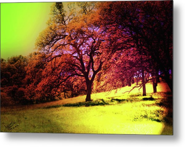 Hot Summer  Metal Print by Monroe Snook