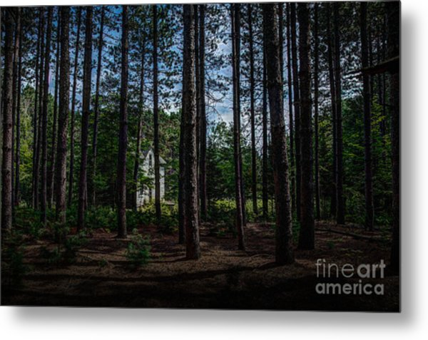 House In The Pines Metal Print