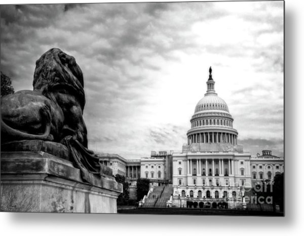 House Of Lions Metal Print