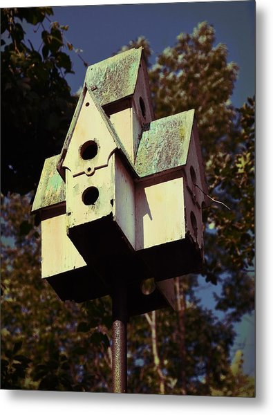 House Sparrow Metal Print by JAMART Photography