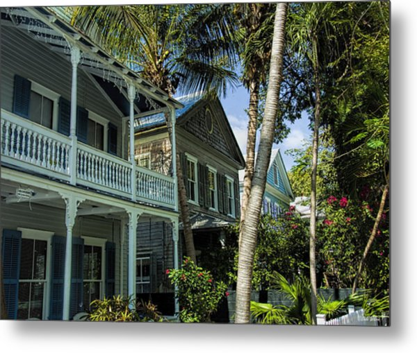 Houses In The Palms  Metal Print by Dale Wilson