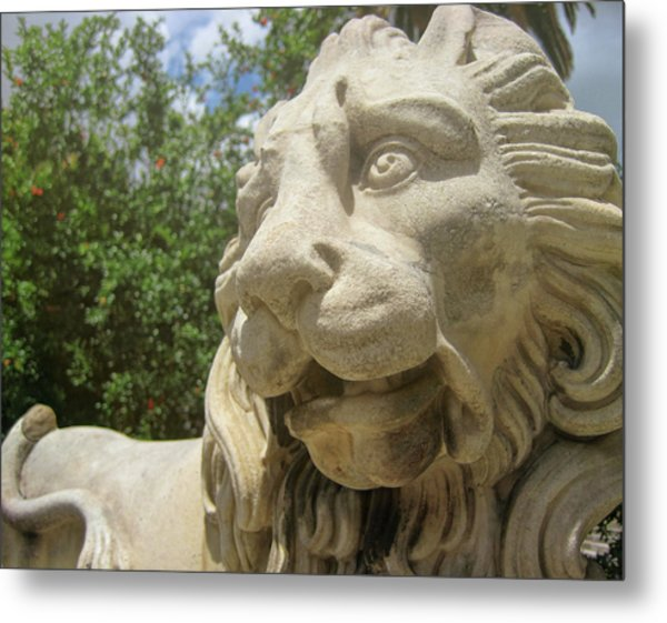 How Loud Is A Lion Metal Print by JAMART Photography