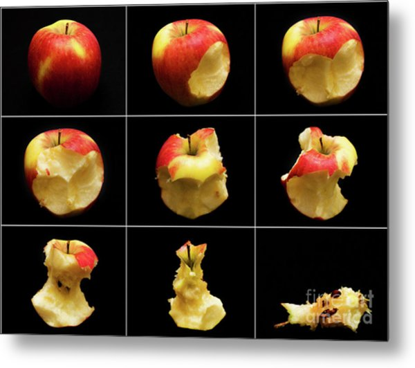 How To Eat An Apple In 9 Easy Steps Metal Print