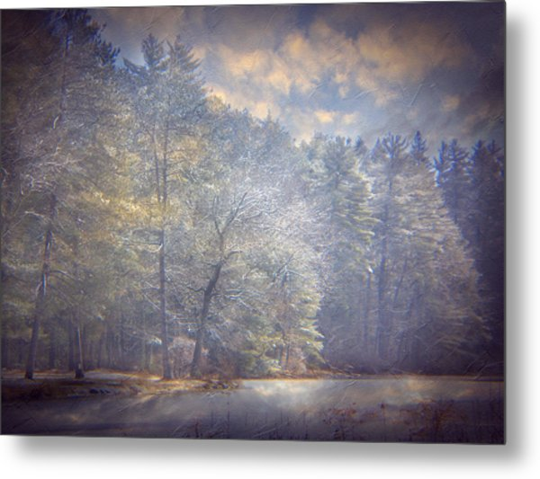 Howe State Park In Winter Metal Print