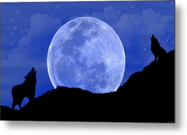 Howl At The Moon Metal Print by Evelyn Patrick