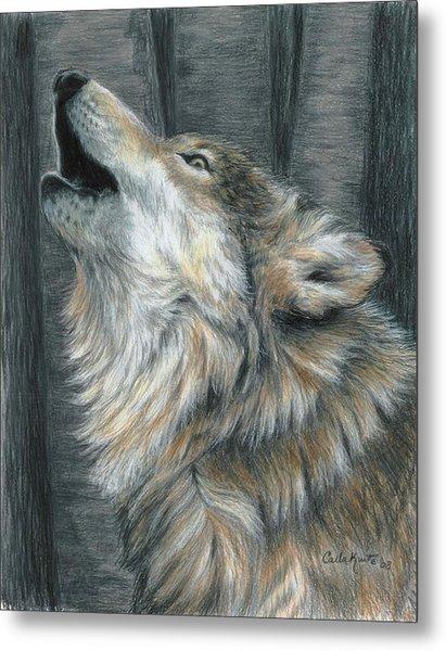 Howling Wolf Metal Print by Carla Kurt