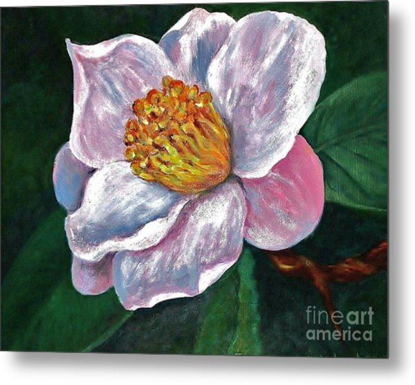 Hoyt Flower Oil 2 Metal Print by Emily Michaud