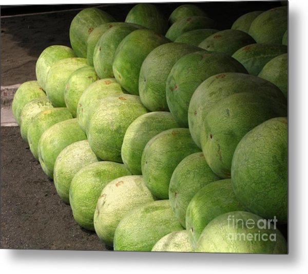 Huge Watermelons Metal Print