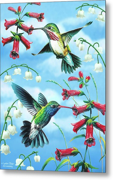 Humming Birds Metal Print