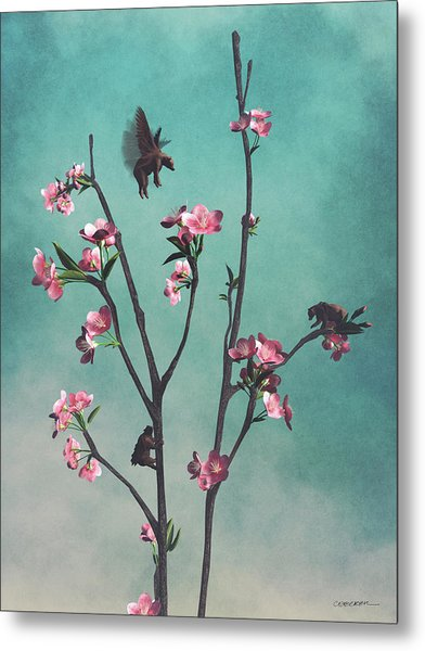 Hummingbears Metal Print