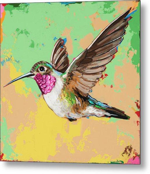 Hummingbird #21 Metal Print