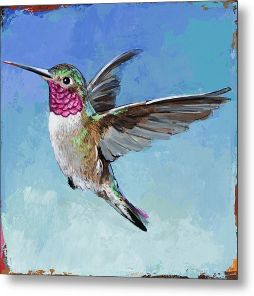 Hummingbird #6 Metal Print