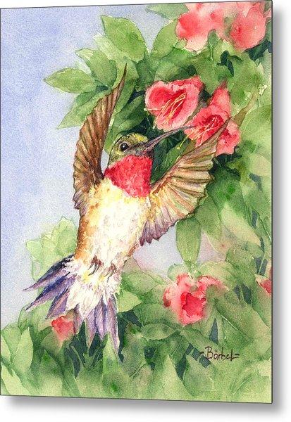 Hummingbird And Nectar Metal Print