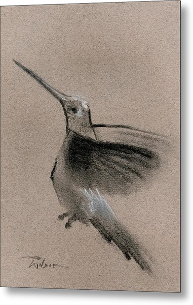 Fine Art Charcoal Rendering Of A Hummingbird In Flight. Metal Print by Ron Wilson