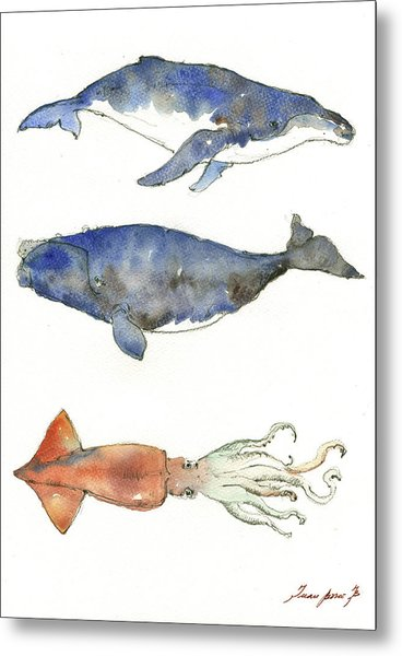 Humpback Whale, Right Whale And Squid Metal Print