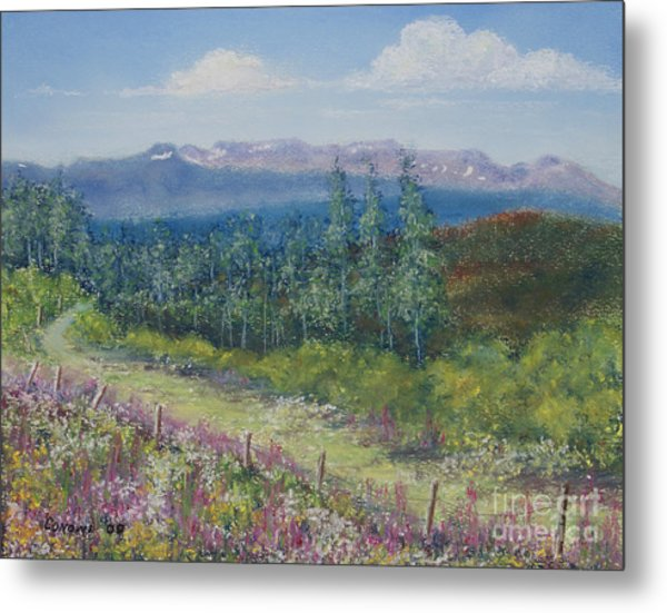 Summer Flowers On Hungry Hill Metal Print