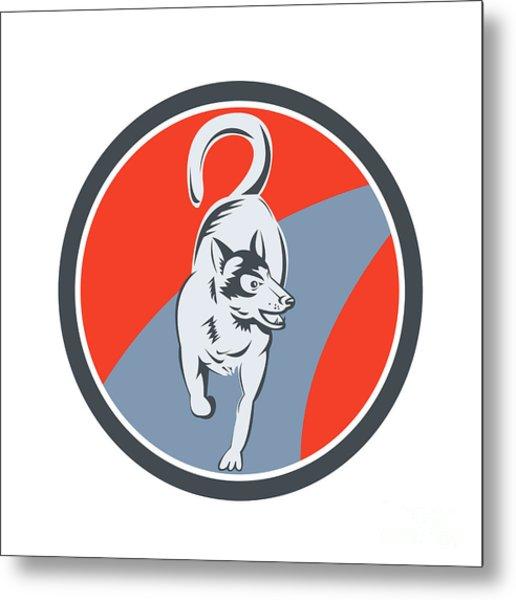 Huskie Sled Dog Circle Retro Metal Print