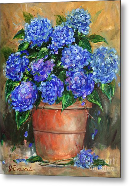 Hydrangeas In Pot Metal Print