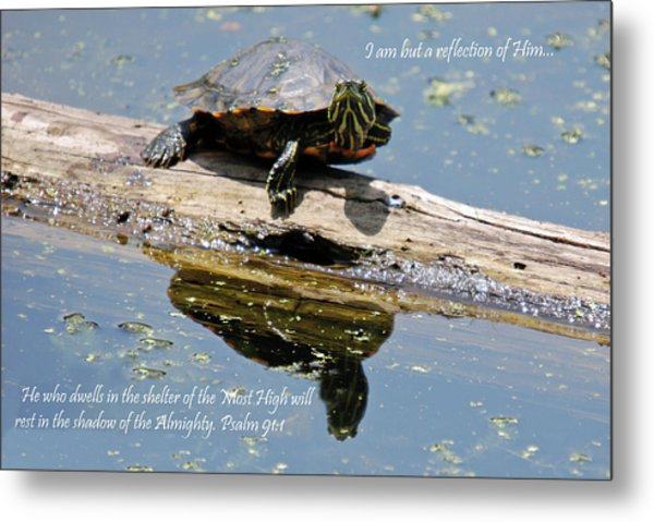I Am But A Reflection Metal Print