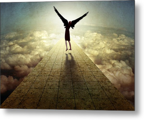 I Can Fly ... Metal Print