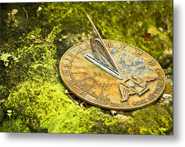 Metal Print featuring the photograph I Count None But Sunny Hours by Carolyn Marshall