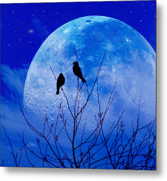 I Would Give You The Moon Metal Print