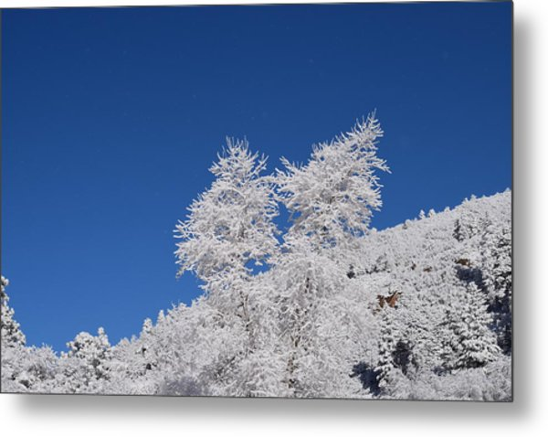 Ice Crystals Ute Pass Cos Co Metal Print
