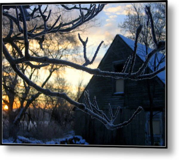 Ice Crystals Metal Print by Trina Prenzi