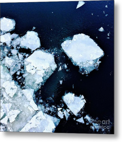 Iced Beauty #1 Metal Print