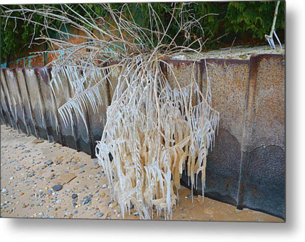 Iced Over Metal Print