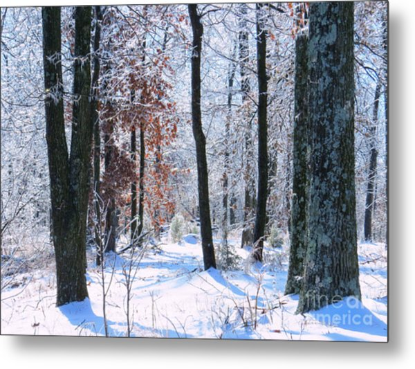 Icey Forest 1 Metal Print