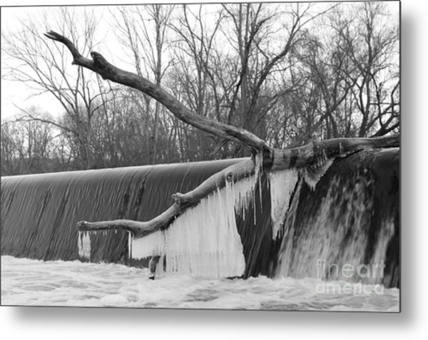 Icicle Laden Branch Over The Waterfall Metal Print