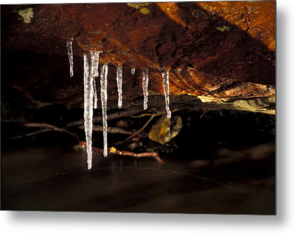 Icicles Metal Print by Richard Steinberger